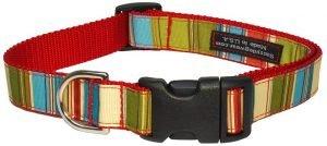 Sassy Dog Wear Multi Stripe Dog Collar