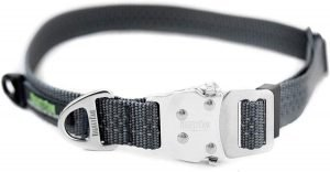 Mighty Paw All Metal Hardware Dog Collar