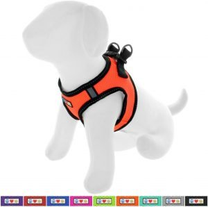 Pawtitas Nylon Reflective Back Clip Dog Harness