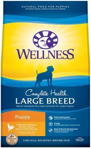 Wellness Large Breed Complete Health Puppy Dry Dog Food