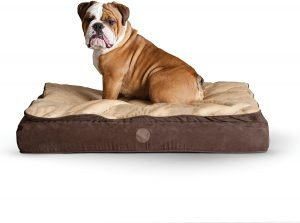 K&h Pet Products Feather Top Orthopedic Pillow Dog Bed