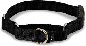 Petsafe Quick Snap Buckle Nylon Martingale Dog Collar