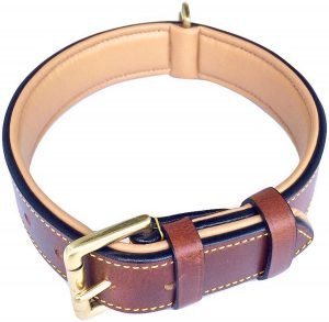 Soft Touch Collars Leather Dog Color