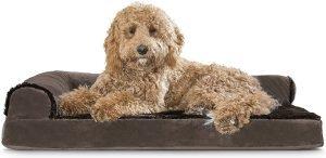 Furhaven Plush & Velvet Comfy Couch Dog Bed