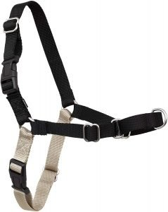 Petsafe Easy Walkdog Harness