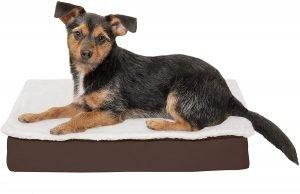 Furhaven Deluxe Convertible Memory Foam Pillow Dog Bed