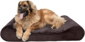 Furhaven Minky Plush Luxe Lounger Orthopedic Cat & Dog Bed