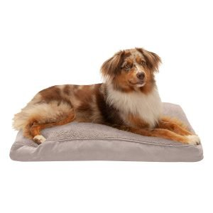 Furhaven Snuggle Deluxe Orthopedic Pillow Cat & Dog Bed