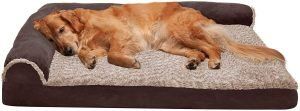 Furhaven Two Tone Deluxe Chaise Memory Top Cat & Dog Bed