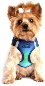 Doggie Design American River Ombre Nylon Reflective Back Clip Dog Harness