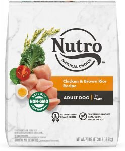 Nutro Natural Choice Adult Chicken & Brown Rice Recipe Dry Dog Food