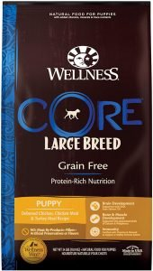 Wellness Core Grain Free Large Breed Puppy Deboned Chicken Recipe Dry Dog Food