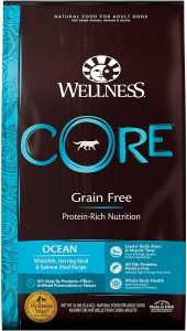 Wellness Core Ocean Whitefish, Herring & Salmon Recipe Dry Dog Food