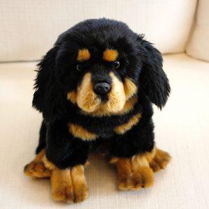 10 Dog Breeds Most Compatible With Tibetan Mastiffs